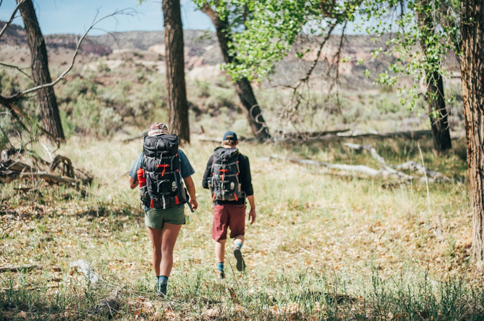 A picture of two people hiking